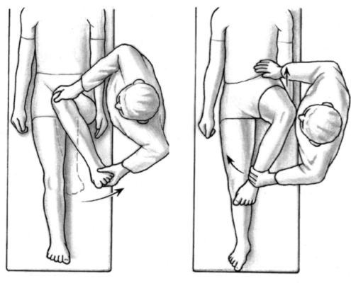 Hip: Int & Ext Rotation